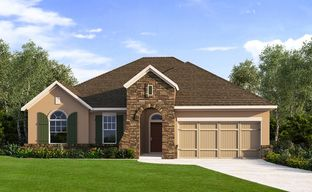 The Crossvine 60' by David Weekley Homes in San Antonio Texas