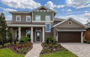 Baycrest - Waterset Cottage Series: Apollo Beach, Florida - David Weekley Homes