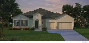 Boulevard - John's Lake Landing - Manor Series: Clermont, Florida - David Weekley Homes