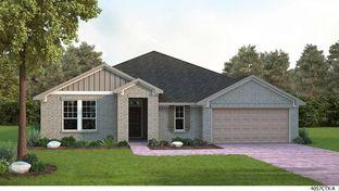 Canter - The Colony Riverside 65': Bastrop, Texas - David Weekley Homes