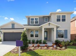 Cecily - Waterset Cottage Series: Apollo Beach, Florida - David Weekley Homes