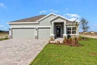 Chipper - Isles at BayView: Parrish, Florida - David Weekley Homes