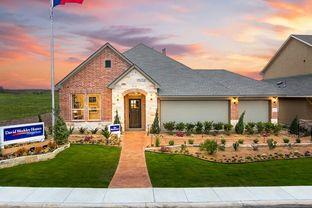 Bluebonnet - Davis Ranch 60': San Antonio, Texas - David Weekley Homes