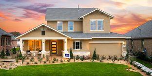 Palomar - Davis Ranch 60': San Antonio, Texas - David Weekley Homes