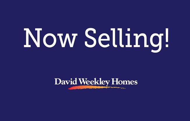 Now Selling in Pioneer Village at Crosswater Nocatee 40'