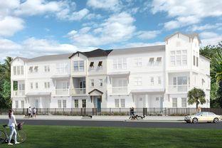 Braidwood - City Homes at Payne Park Village: Sarasota, Florida - David Weekley Homes