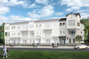 Edgewood - City Homes at Payne Park Village: Sarasota, Florida - David Weekley Homes