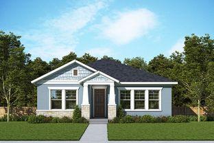 Malone - Persimmon Park - Cottage Series: Wesley Chapel, Florida - David Weekley Homes