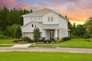 Redwing - Persimmon Park - Garden Series: Wesley Chapel, Florida - David Weekley Homes