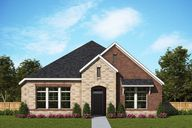 Elements at Viridian - Traditional Series by David Weekley Homes in Fort Worth Texas