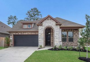 Broadacre - Tavola 50': New Caney, Texas - David Weekley Homes