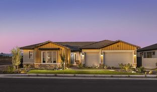 Tranquility - Harvest - Saddlestone Collection: Queen Creek, Arizona - David Weekley Homes