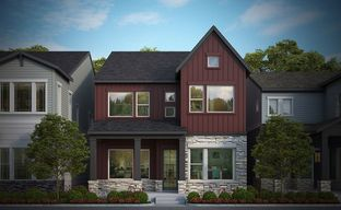 Baseline 35' - The Pinnacle Collection by David Weekley Homes in Denver Colorado