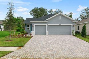 Arabica - North River Ranch - Cottage Series: Parrish, Florida - David Weekley Homes