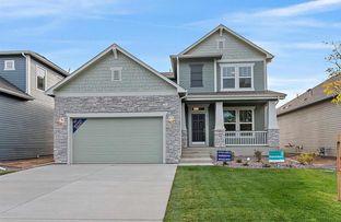 Rockford - Timnath Lakes: Timnath, Colorado - David Weekley Homes