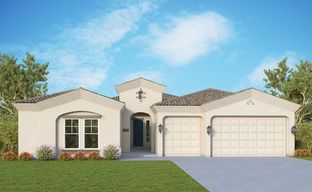 Harvest - Orchard Collection by David Weekley Homes in Phoenix-Mesa Arizona