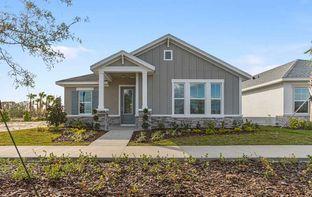 Bellmeade - Persimmon Park - Cottage Series: Wesley Chapel, Florida - David Weekley Homes