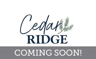Cedar Ridge by David Weekley Homes in Charlotte North Carolina