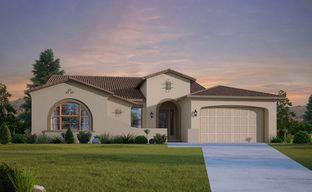 Sierra at Alamar by David Weekley Homes in Phoenix-Mesa Arizona