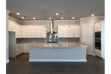 Kitchen-in-Lorenzo-at-Encore at FishHawk Ranch Tradition Series-in-Lithia
