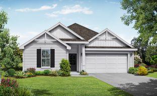 Salem Landing by Davidson Homes LLC in Nashville Tennessee