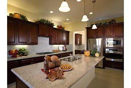 Kitchen-in-Residence 260i-at-Envision at Loma Vista-in-Clovis