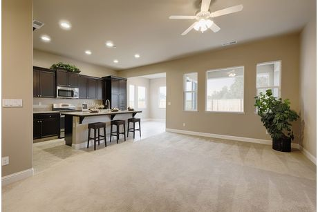 Empty-in-Residence 175i-at-Envision at Loma Vista-in-Clovis