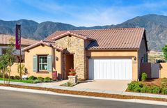 11130 Briar Rose Court (Bellwood)