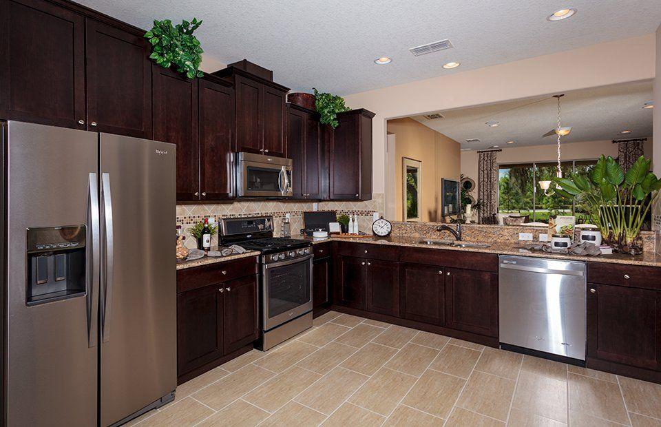Kitchen-in-Noir Coast-at-Del Webb Orlando-in-Davenport