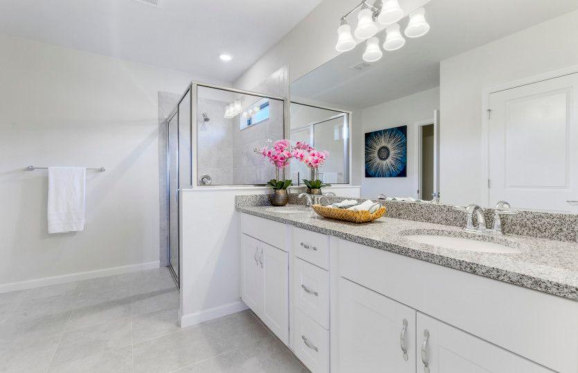 Bathroom-in-Dolce-at-Del Webb Naples-in-Ave Maria