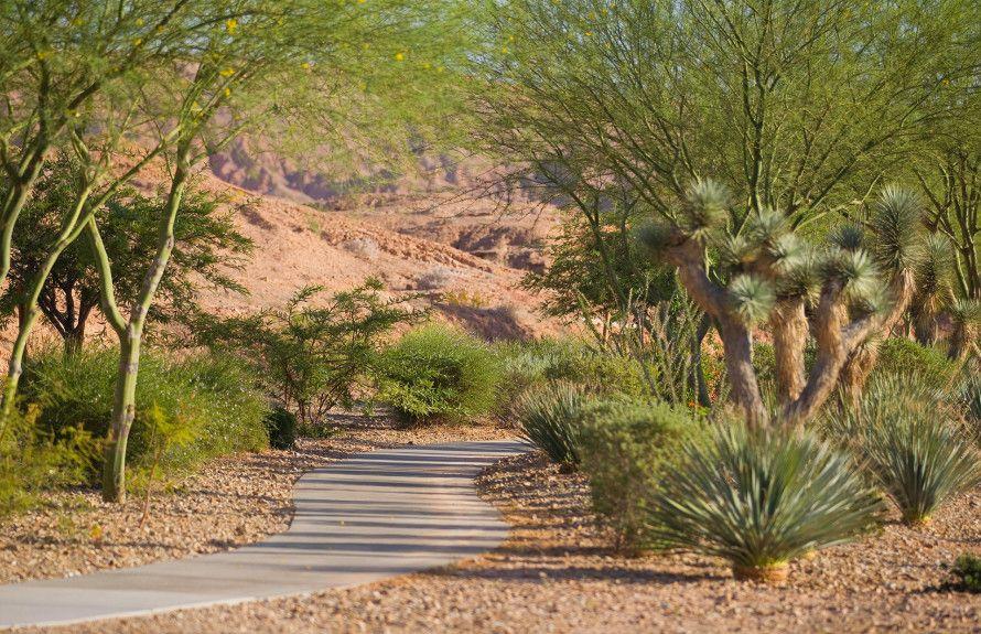 'Sun City Mesquite' by Del Webb - Nevada - Mesquite in Las Vegas