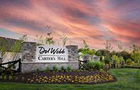 Carter's Mill by Del Webb in Washington Virginia
