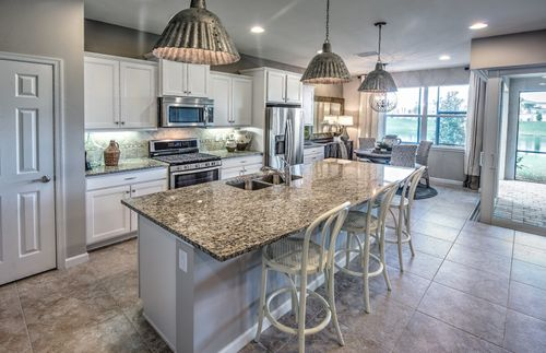 Kitchen-in-Pompeii-at-Mallory Park at Lakewood Ranch-in-Lakewood Ranch