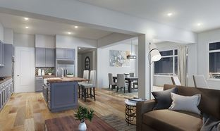 Penthouse - Skyview: Oakland, California - Discovery Homes