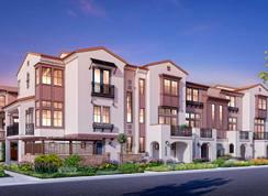 Maravilla- Plan 3X - Maravilla: Mountain View, California - Dividend Homes