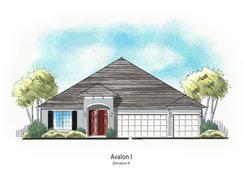 Avalon - Wilford Preserve: Orange Park, Florida - Dream Finders Homes