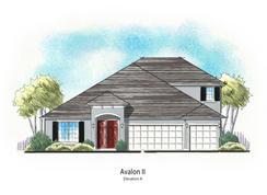 Avalon II - Wilford Preserve: Orange Park, Florida - Dream Finders Homes