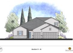 Avalon II - Magnolia Hill: Richmond Hill, Georgia - Dream Finders Homes