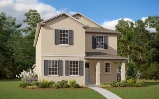 Davis - Lakeside at Hamlin: Winter Garden, Florida - Dream Finders Homes