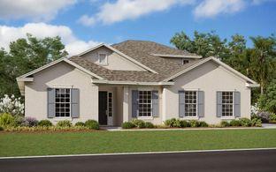 Arlington with Bonus - Deer Island: Tavares, Florida - Dream Finders Homes