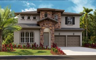 Biscayne - Bella Collina: Montverde, Florida - Dream Finders Homes
