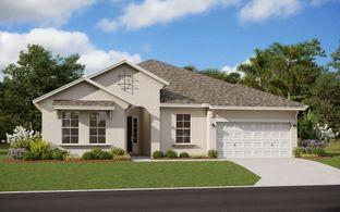Arlington - Summerdale Park at Lake Nona - Now Selling!: Orlando, Florida - Dream Finders Homes