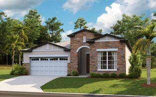 Messina - Wiregrass: Saint Cloud, Florida - Dream Finders Homes