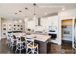 Summit - RainDance: Severance, Colorado - Dream Finders Homes