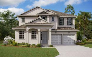 Biscayne - Deer Island: Tavares, Florida - Dream Finders Homes