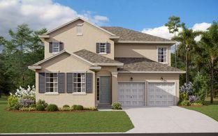 Captiva - Hartwood Landing: Clermont, Florida - Dream Finders Homes