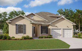 Arlington w/ Bonus - Summerdale Park at Lake Nona: Orlando, Florida - Dream Finders Homes