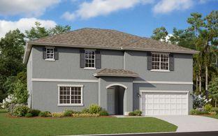Montego - Deer Island: Tavares, Florida - Dream Finders Homes