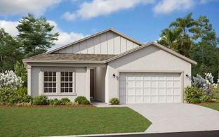 Bradley - Hammock Reserve: Haines City, Florida - Dream Finders Homes