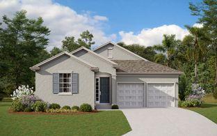 Anna Maria - Summerdale Park at Lake Nona: Orlando, Florida - Dream Finders Homes